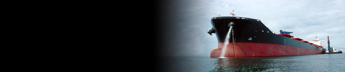 Námořní odvětví
